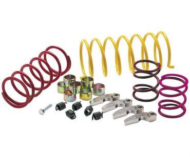 Polaris 1000RZR/XP 4X4 EPI Sport Utility clutch upgrade kit